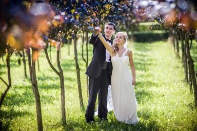 ogród włoski sesja ślubna