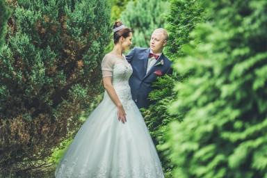 sesja ślubna w drzewach