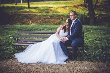 sesja ślubna na ławce